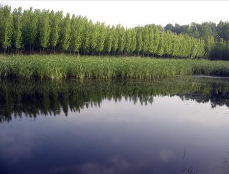 秦皇岛国家森林公园