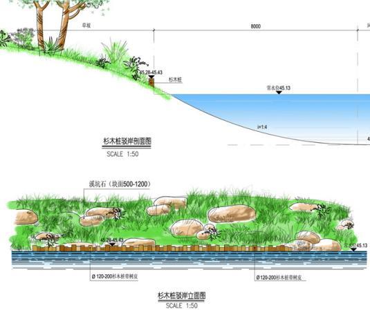 新余湿地公园景观规划设计方案 苏州风光花卉