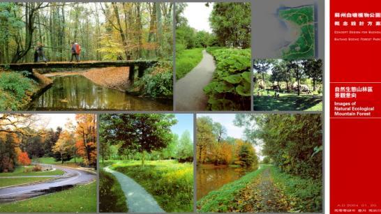 植物配置生态:自然配置以兼顾规则,立足异形;体现功,统筹植物;适树revit布局柱子绘制图片