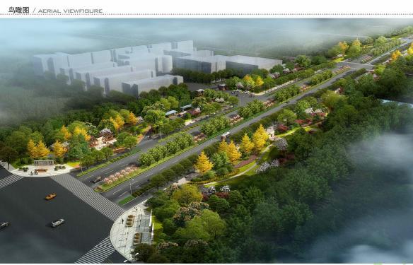 道路绿化景观设计内容道路绿化景观设计版面设计图片