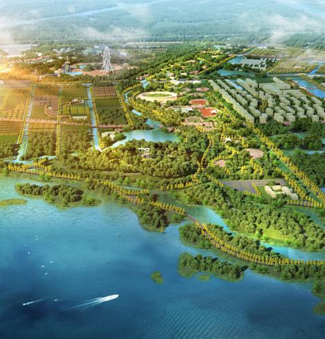 东营市城市森林公园揽翠湖片区详细规划-优80设计空间