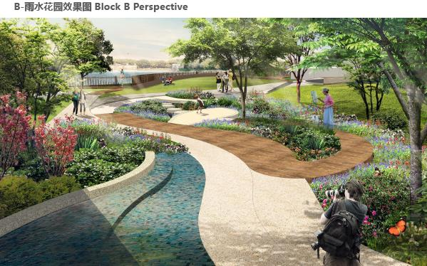 雨水花园-南京龙湖龙湾方案深化设计FINAL 2016图片