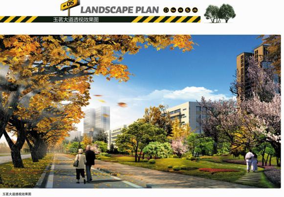 安石大道等八条城市道路绿化景观设计,包括项目前期分析,总体设计,各